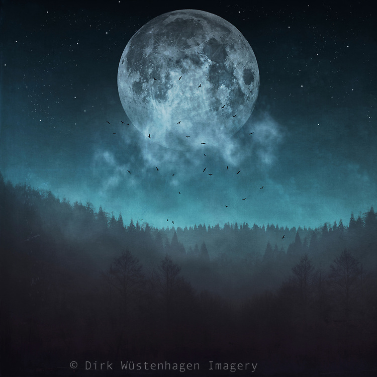 Full moon and stars over a misty woodland - manipulated and textured photograph<br /> Prints &amp; more: http://bit.ly/2fV3W6i