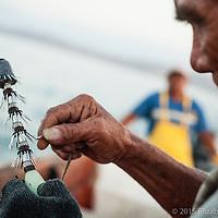 Don Manolo prepara la potera, la cual se utiliza para extraer el calamar, atrayéndolo con su material fosforecente.