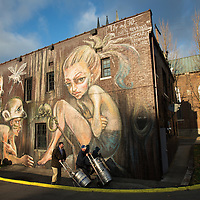 A mural titled 'Lily and the Silly Monkeys' by artist Herakut,visible from W. Short Street in Lexington, Ky., Thursday, December 3, 2015. (Photo by David Stephenson)