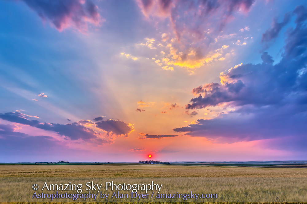 The red setting Sun in haze, casting shadows across the sky – crepuscular rays - and lighting the clouds, over a ripening wheatfield near home in Alberta. This is an HDR stack of 5 exposures, handheld, with the 24mm lens and Canon 6D, at 2/3rd stop intervals, and composited with Photomatix Pro. Taken August 6,, 2014.