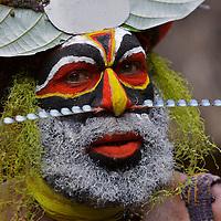 New Guinea People