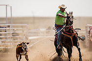 Rocky Boy Rodeo-Indian cowboys-Tie Down Roping-calf roping-Rocky Boy Reservation-Montana-Eric Watson Chippewa Cree
