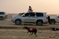 Race spectators are mobile as they drive their Land Cruisers alongside the pack of running dogs. Many hang out of their vehicles, making barking sounds to encourage their favorite runner.