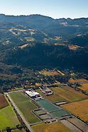 Ballentine Vineyards, Napa