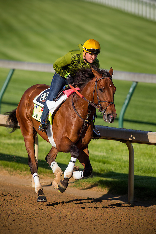 April 29, 2015: Keen Ice gallops in preparation for the Kentucky Derby at Churchill Downs Louisville Ky. Alex Evers/ESW/CSM