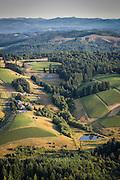 Aerial view over WillaKenzie Estate, Yamhill-Carlton AVA, Willamette Valley, Oregon