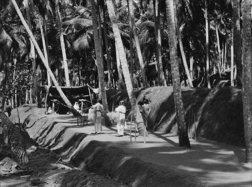 Spinning Coir Into Rope, Quilon, India, 1929