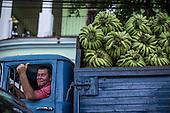 CUBA SAMPLES 2016