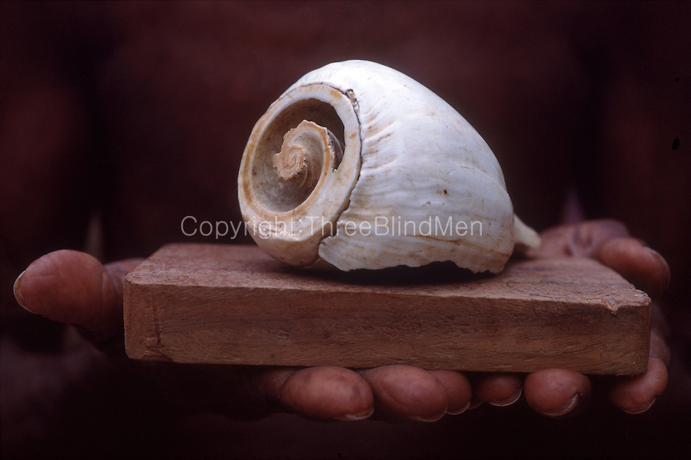Conch shell and board - to be placed on the floor of a threshing ground for Paddy.