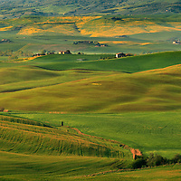 An early mnorning view of the country side between Pienza and San Quirico d'Orcia in Val d'Orcia, Tuscany, right at the feet of Mount Amiata, one of the largest and tallest quiescient volcanos of Italy.