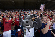 Spike, Gonzaga's mascot, cheers on the men's basketball team with fans prior to tip-off against Memphis at the McCarthey Athletic Center in Spokane, WA, Saturday, Jan. 31, 2015. (Ryan Sullivan/Gonzaga University)