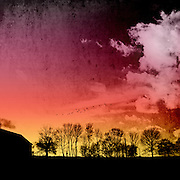 Tree silhouettes against a colourful evening sky. Texturized photograph.<br />