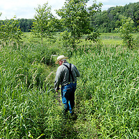 Walking down to a small pond in Waushara County Wisconsin.