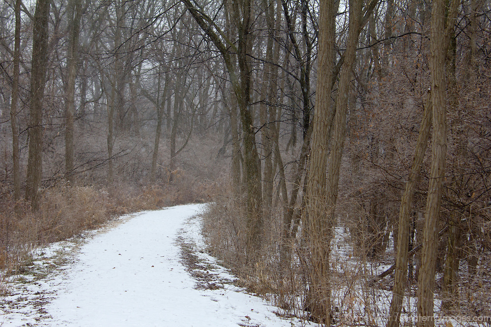 USA, Illinois, Darien. Winter scene in Oldfield Oaks Forest Preserve.