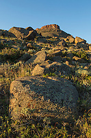 Boulders on the slope of South Table Mountain