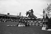 RDS Horse Show. Red Rocket, owned by Brian Henry, clearing a jump to  in the Childrens Jumping Competition. Red Rocket was placed joint second in the competition..08.08.1963