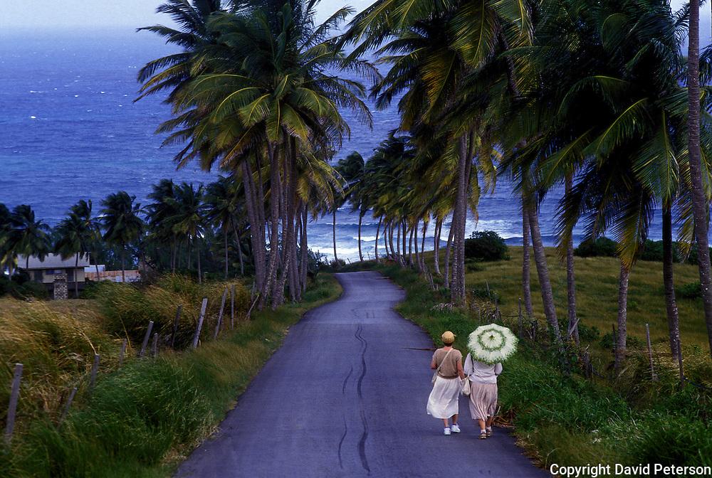 Two local residents take a stroll to the sea near Bathsheba, Barbados.