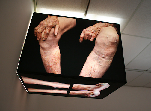 Ginger Frye, Fragments, 2012, wood, plexiglas, backlit film, Installation Dimensions 485 sq