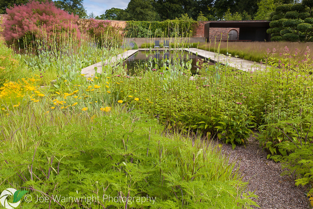 A border, rich in summer yellows, next to a pool in the Walled Garden at Cogshall Grange, Cheshire - designed by Tom Stuart-Smith