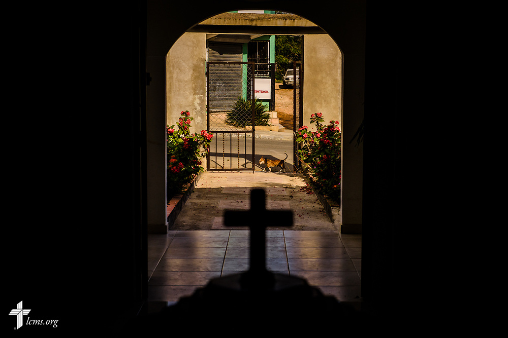 A dog passes the gate in front of the entrance to Amigos de Cristo Iglesia Luterana in Las Americas (Friends of Christ Lutheran Church in the Americas) on Saturday, March 18, 2017, in Santo Domingo. LCMS Communications/Erik M. Lunsford