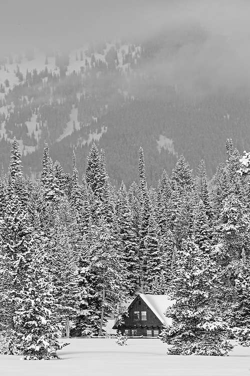 A rustic cabin sits nestled among the snow-covered evergreens in Grand Teton National Park.