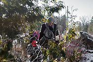 March 5, 2017-Hemmingford, Quebec : A migrant mother from Yemen leads her family across the Canadian border on Roxham Road.
