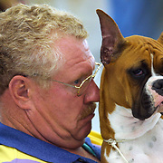 "Randy Thayerj,  from Belmond, Ia., waits with his boxer ""Star"" for competition at the Big Dog Show at the Iowa State Fairgrounds in Des Moines, Iowa."