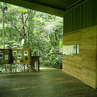 Located at the beginning of the world famous Pipeline Road in Central Panama, Rainforest Discovery Center is a new kind of interactive nature Center. Allows you to go up 30-meter in a high observation Tower, higher than the canopy. Developed by Fundacio?n Avifauna Eugene Eisenmann, introduces the natural wonders of our rainforests to locals and foreign tourists who visit Panama every year.