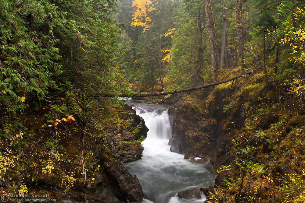 Fall colours and Lower Little Qualicum River in Little Qualicum Falls Provincial Park on Vancouver Island, British Columbia, Canada
