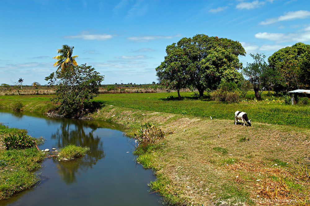 Central America, Cuba, Caibarien. Countryside between Caibarien and Remedios.
