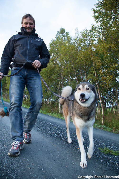 Smirre, an  East Siberian Laika dog from Tydal in Norway, is trained as a bear tracking dog by the Scandinavia Working Dog Institute(SWDI)  in Sweden.