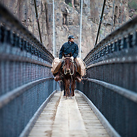 Packer and a string of Mules crossing the Black Bridge over the Colorado river in the Inner Groge of Grand Canyon National Park.