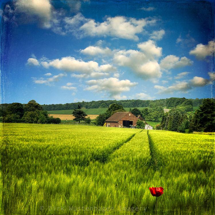 Naive style rural landscape <br /> <br /> License through Gettyimages:<br /> http://www.gettyimages.de/detail/foto/farm-lizenzfreies-bild/114945285?esource=en-us_flickr_photo