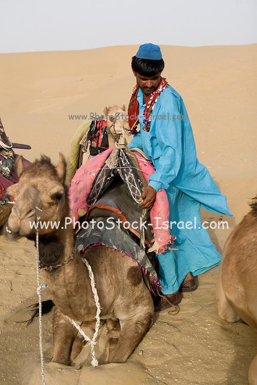 India, Rajasthan, Jaisalmer, camel trek in the sand dunes of the Kanoi region (near the border with Pakistan)
