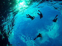 Maui Beach Vacation 2015 - Scuba Divers Descending into the Molokini Crater<br /> <br /> &copy;2015, Sean Phillips<br /> http://www.RiverwoodPhotography.com