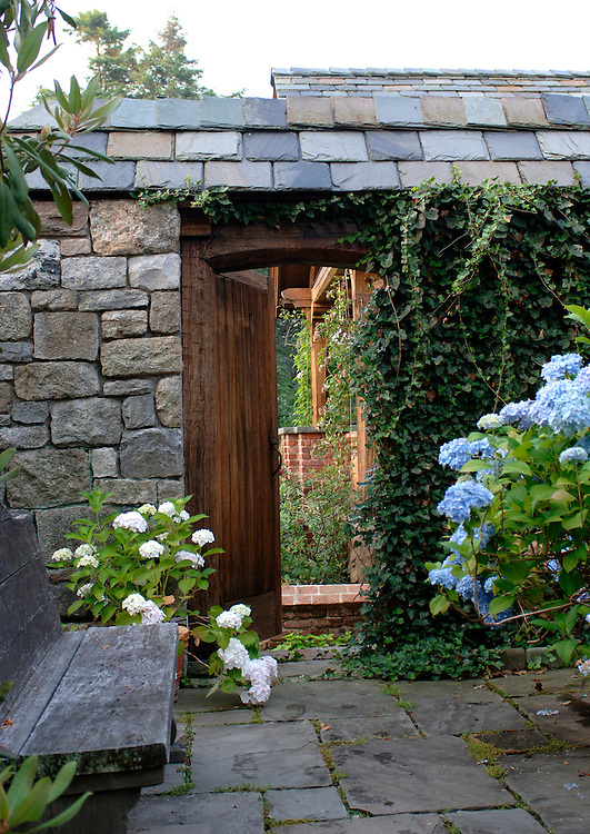 A GARDEN DOOR WITH HYDRANGEA AND HEDERA