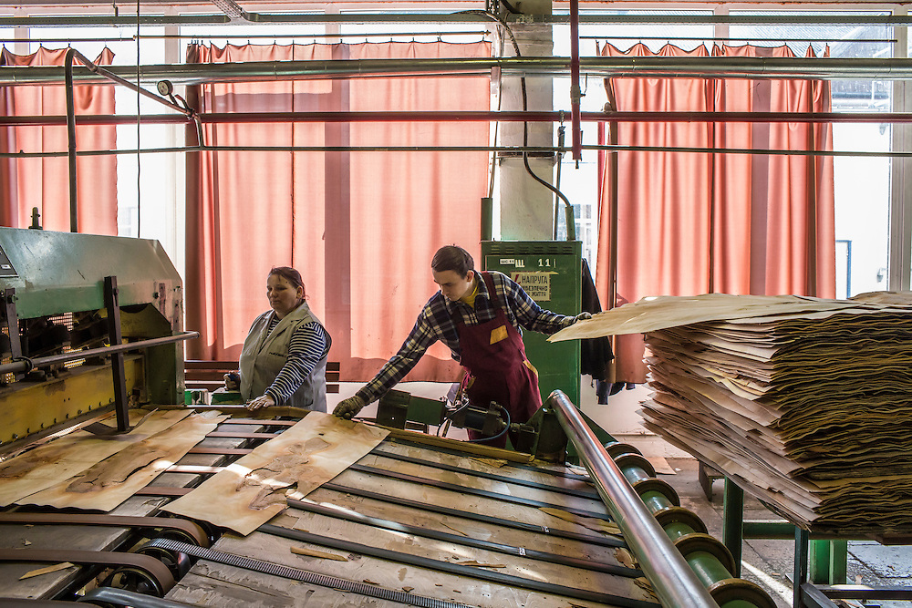MUKACHEVO, UKRAINE - FEBRUARY 25, 2016: Workers at the Fischer-Mukachevo factory feed sheets of wood into a machine that cuts them into narrower strips, one step in the manufacturing process for skis and hockey sticks, in Mukachevo, Ukraine. The plant fabricates skis as well as hockey sticks, many of which are produced for export. CREDIT: Brendan Hoffman for The New York Times