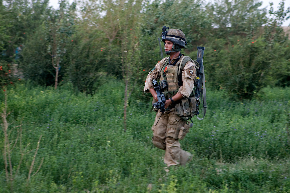 A British soldier of 3rd Battalion The Parachute Regiment searches a garden after a dawn assault on a compound as part of Operation 'Southern Beast'. Kandahar Province, Afghanistan on the 6.th of August 2008.