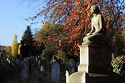 Brompton Cemetery in autumn