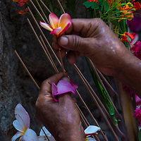 PANCHIMALCO , EL SALVADOR - MAY 08 : A Salvadoran woman decorates palm fronds with flowers during the Flower & Palm Festival in Panchimalco, El Salvador on May 08 2016