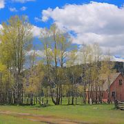 Mormon Row Homestead Wide - Grand Tetons, WY