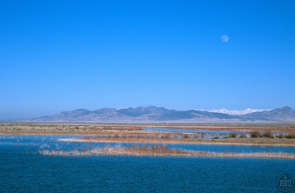 &quot;Rye Patch Reservoir, Nevada&quot; - Rye Patch Reservoir is located 22 miles north of Lovelock, Nevada on Hwy 80, along the Humboldt River. <br /> Photographed: February 2006