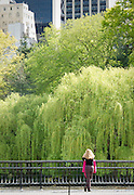 A woman pauses in Central Park to make a telephone call on a bright spring day.