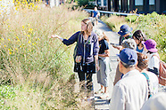 Tour of the Grasslands on the High Line