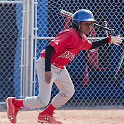 04/14/12 Newark Del. Angels batter Tymier Sewell #8 makes contact with the ball in the second inning of a Canal L.L. League game against the Yankees Saturday, April. 14, 2012 at Canal L.L. Complex in Bear Delaware...Special to The News Journal/SAQUAN STIMPSON