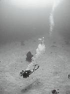 A girl scuba dives over the sand near Roatan, Honduras.