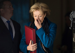 © Licensed to London News Pictures. 25/04/2017. London, UK. Andrea Leadsom, Secretary of State for Environment, Food and Rural Affairs, leaves Downing Street after attending the penultimate Cabinet meeting ahead of the election on June 8th, 2016. Photo credit: Peter Macdiarmid/LNP