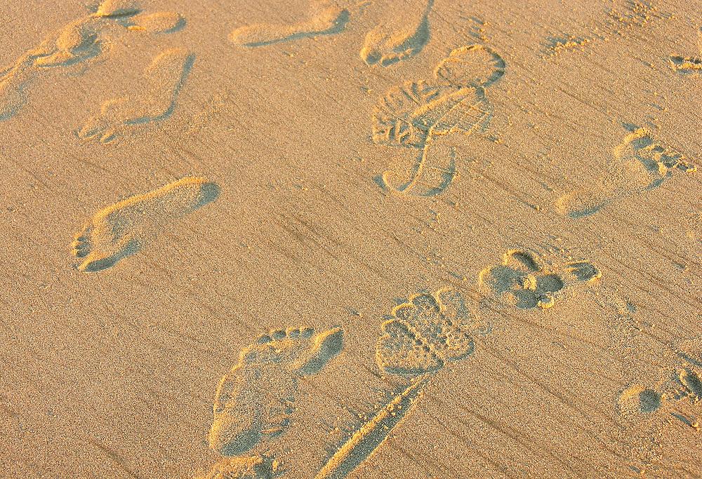 Footsteps on a sandy beach.