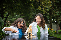Two teen age girls make explosive experiement with Mentos and sodas.