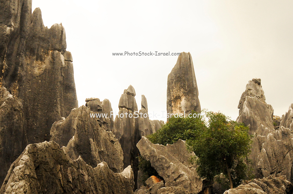 China, Yunnan province, Stone Forest, near Kunming,